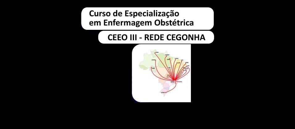Especialização em Enfermagem Obstétrica – CEEO III – Em andamento
